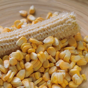 黑龙江早熟玉米品种