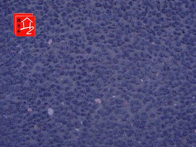 江苏彩色露石砖