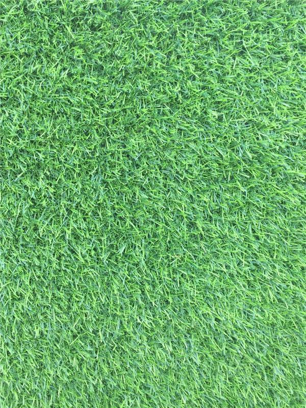 成都成都草坪