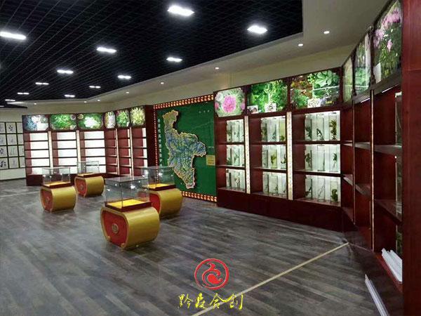 贵州生活馆展柜