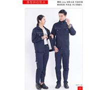 荆州厚型斜纹防水藏青1130