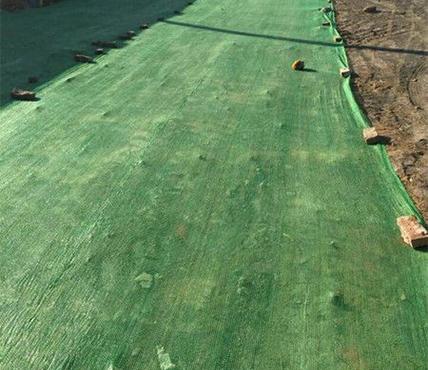 绿色盖土网生产厂家