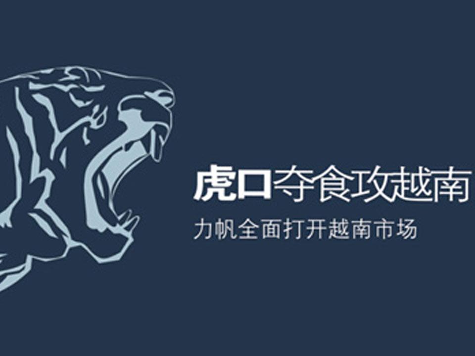 力帆集团越南市场推广策划