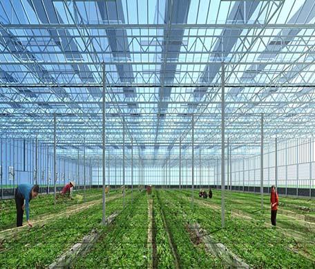 潍坊玻璃育苗温室