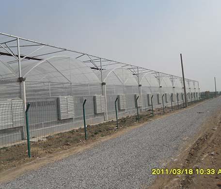 山东圆拱形温室工程