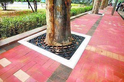 貴陽混凝土路麵磚