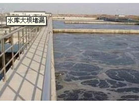 湖北水库大坝堵漏公司