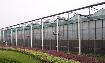 潍坊玻璃智能温室