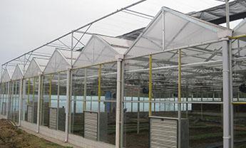 山东玻璃温室