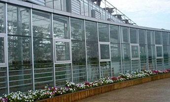山东玻璃智能温室厂家