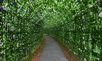 潍坊花棚花架