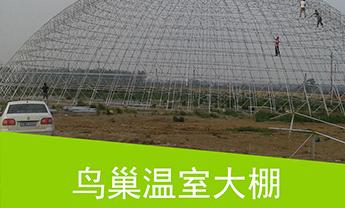 潍坊鸟巢温室