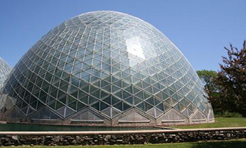 山东鸟巢温室