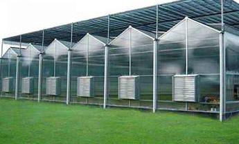 潍坊阳光板智能温室