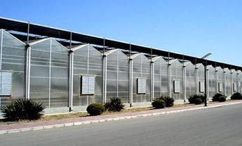 阳光板温室厂家
