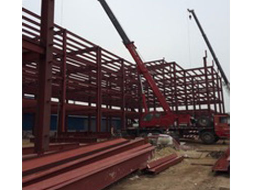 steel structure chicken shed