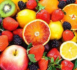 河北水果有機肥