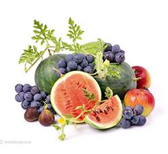 水果有機肥