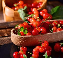 水果有機肥訂購