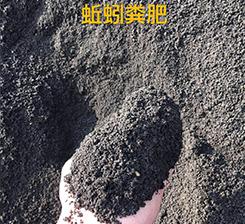 蚯蚓養殖廠家