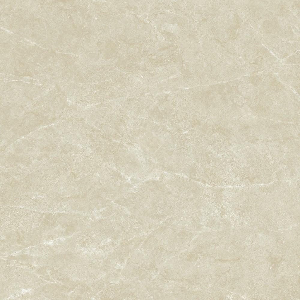 TDY85010D中欧米黄 (3)