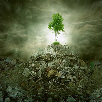 环境影响评价报告
