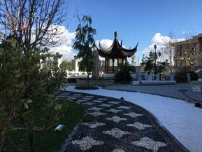 天津庭院绿化工程