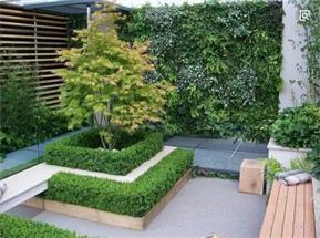 天津现代庭院绿化施工