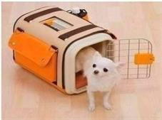 火车宠物托运