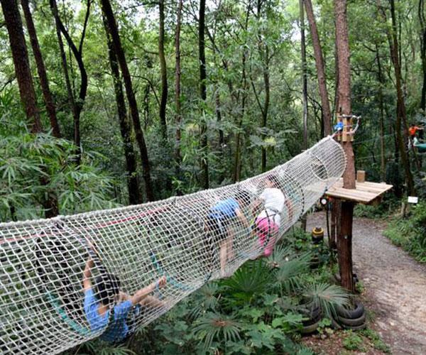 贵阳丛林拓展设备