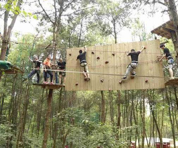 贵州丛林拓展设施