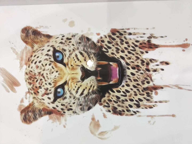 江苏欧迈动物打印机