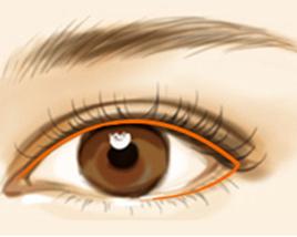 丝植魅惑眼线