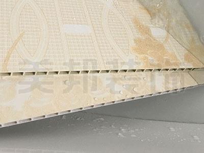 木塑集成墙板