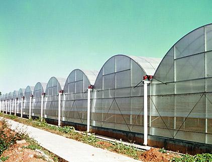 塑料薄膜温室大棚建设