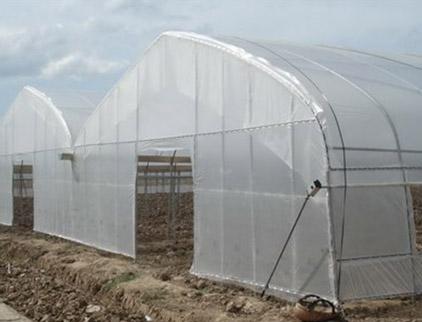 塑料薄膜温室