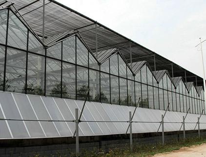玻璃智能温室厂家