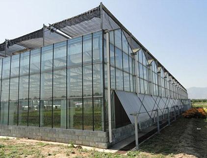 山东玻璃智能温室