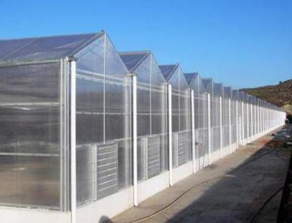 山东阳光板智能温室