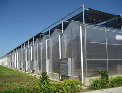 阳光板智能温室厂家