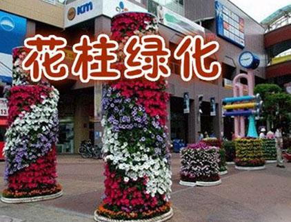 潍坊花树设计