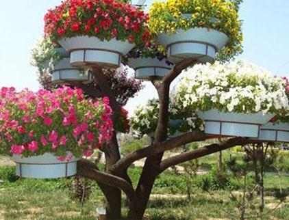 花树设计厂家