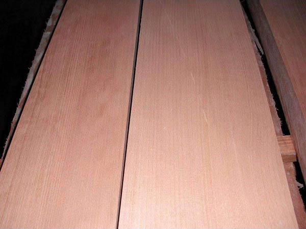 无锡榉木价格