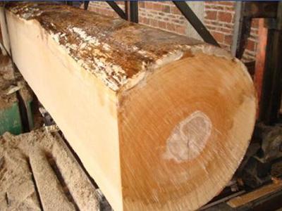榉木插节板