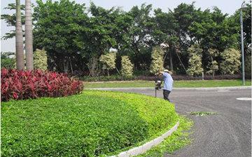 园林绿化保洁