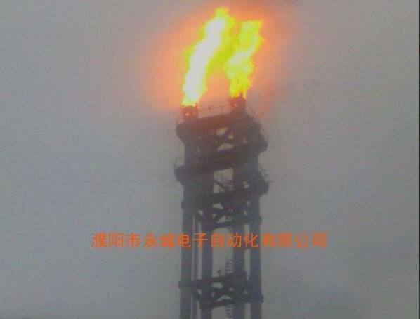 山东鲁丽高架BB平台