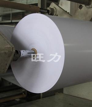 PI覆盖膜双面离型纸