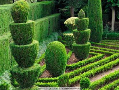 园林景观6