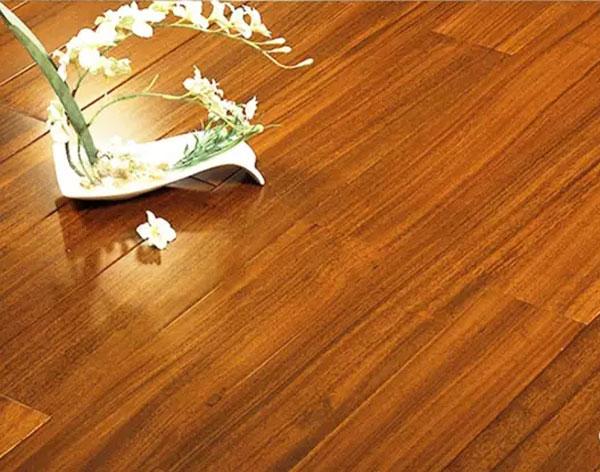 实木圆盘豆