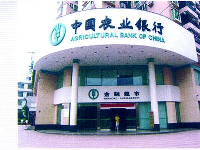 河北明升体育手机版app制作公司